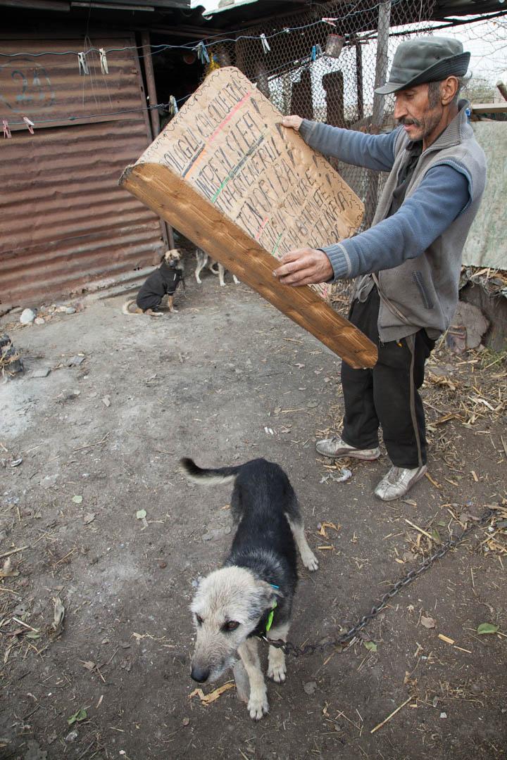 Liviu owner of donkey Vasile