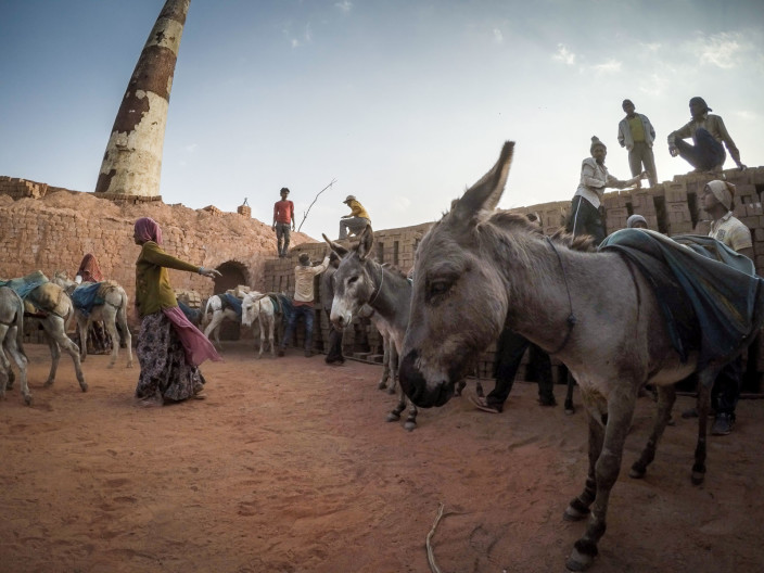 Donkey cam. Donkeys at work in brick kiln. Gujarat, India. © Crispin Hughes