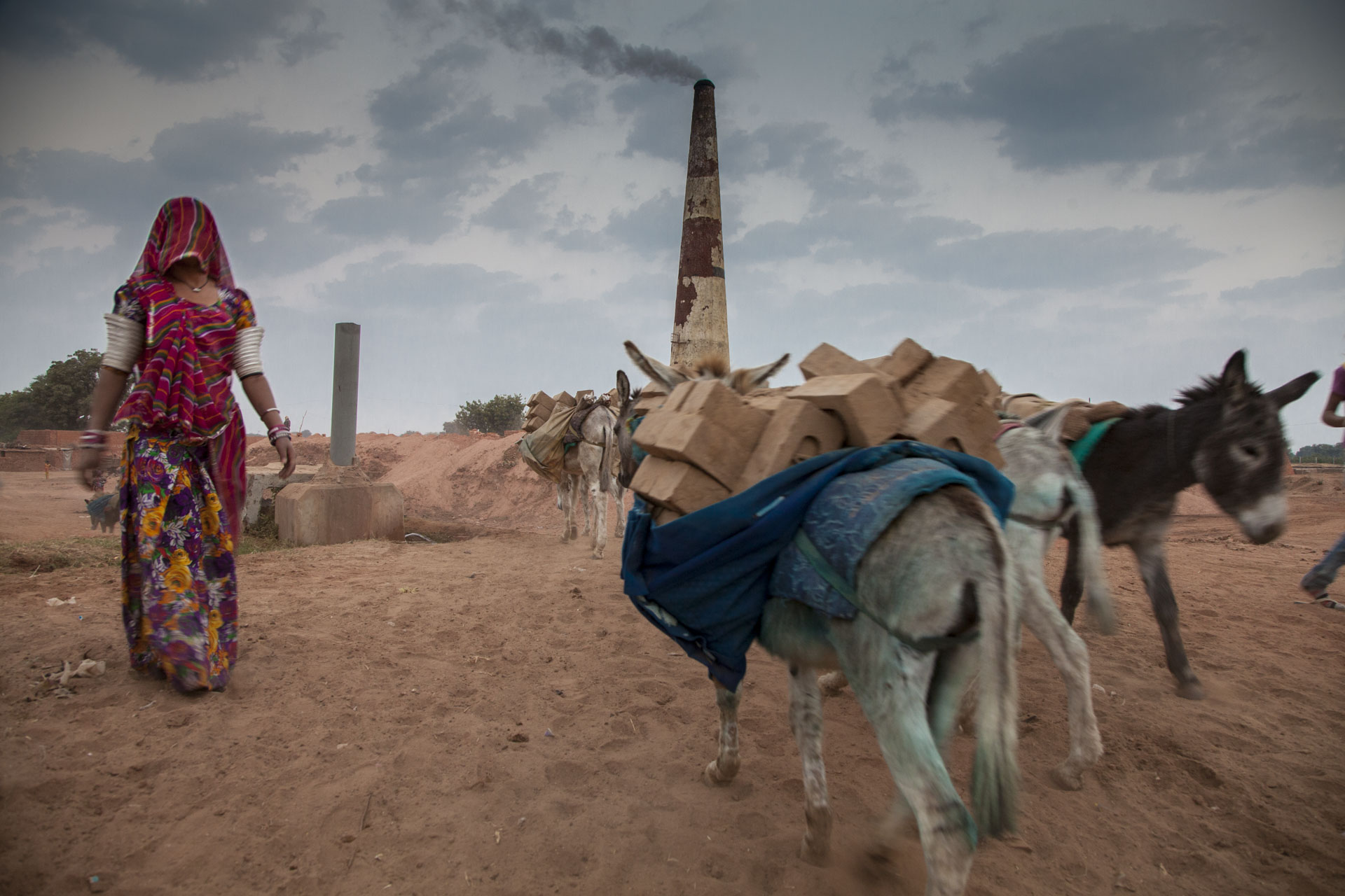 Donkeys work in Indian brick kilns. © Crispin Hughes
