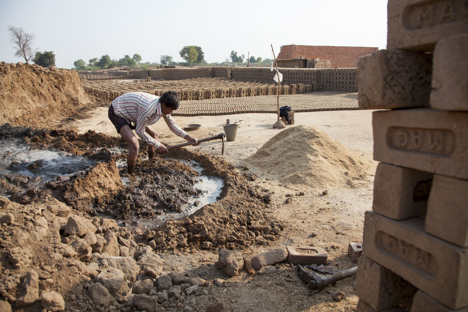 India brick kiln donkeys