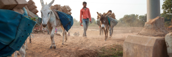 M.A Ambabur Kiln, Ahmedabad.Arjun, Tejaji's brother working at the kiln.Modern India is built on the backs of donkeys. They transport building materials at many construction sites – but almost every brick in the country has been carried by donkeys during its manufacture.